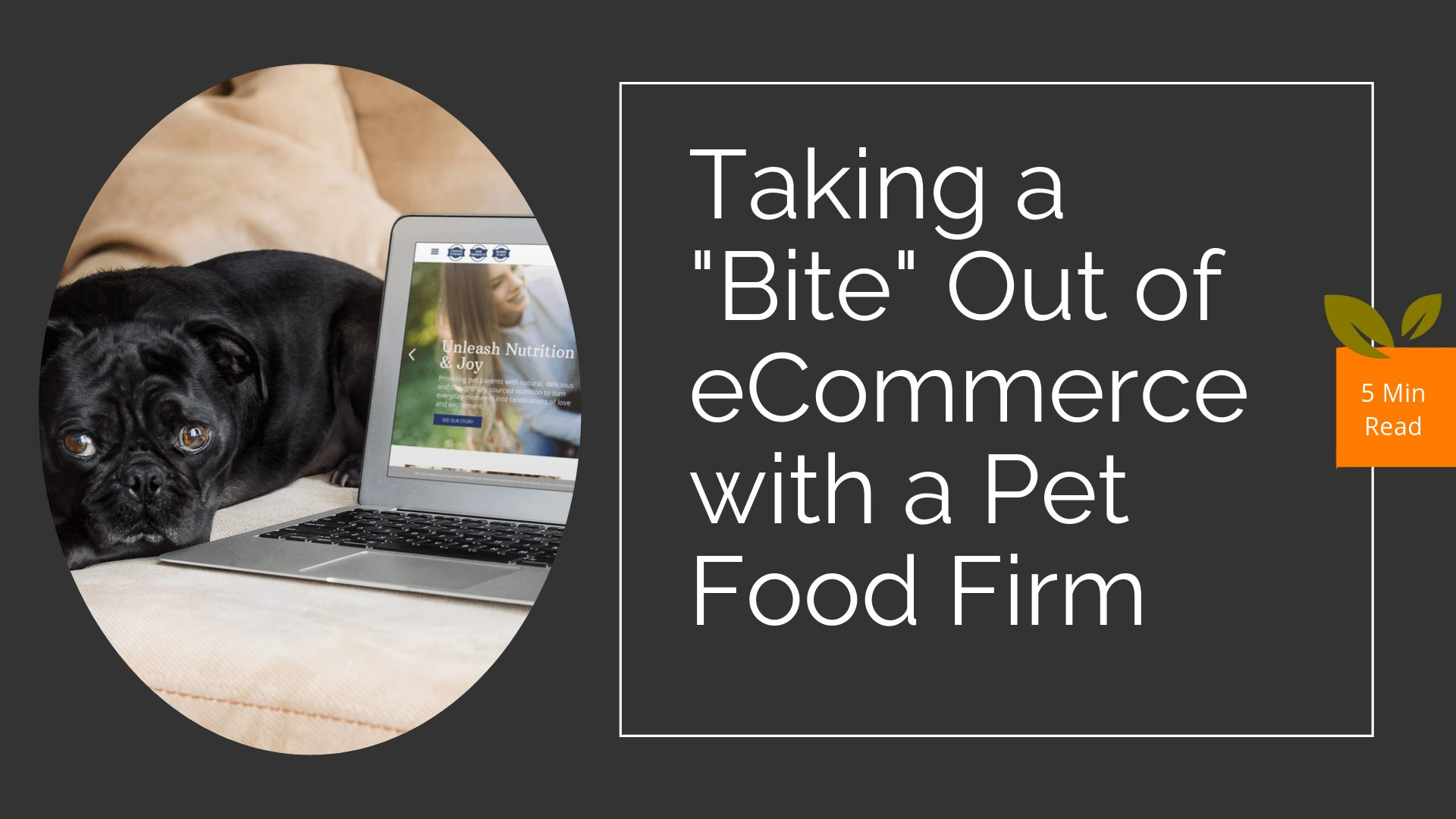 eCommerce Case Study with a Pet Food Firm