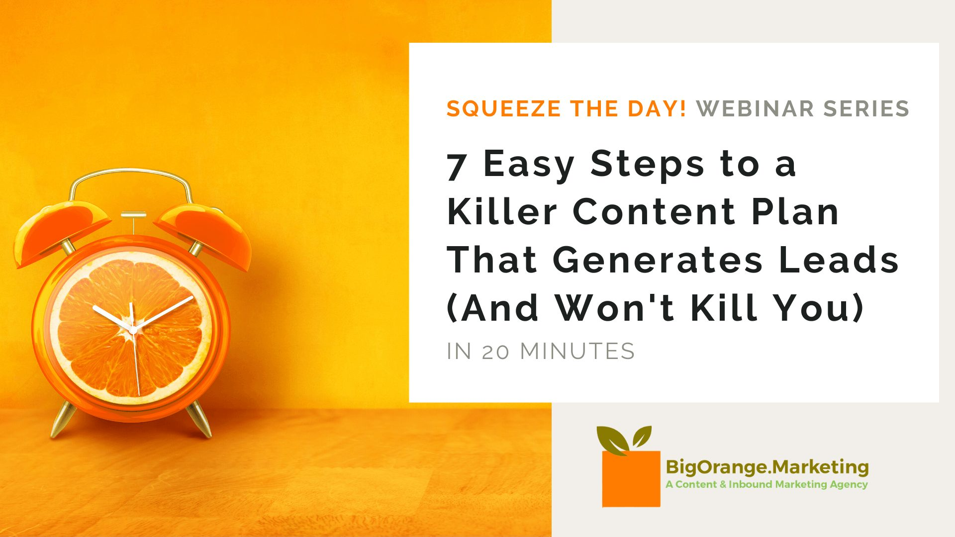 Squeeze the Day Webinar_ 7 Steps to a Killer Content Plan that Generates Leads (and is managable)